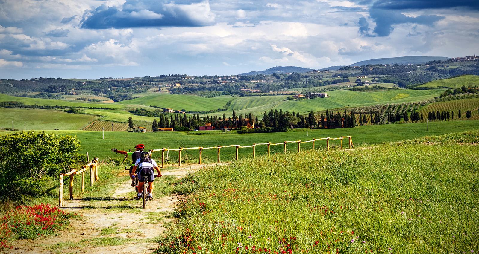 Biciclette e Trekking
